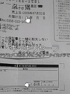 100127_2012~01.jpg