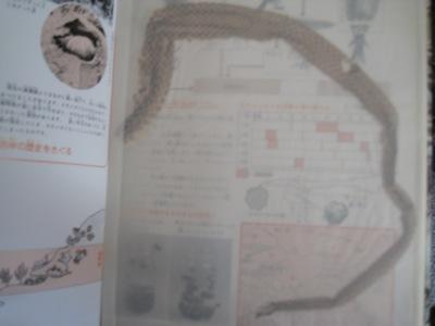 IMG_0787図鑑ヘビの抜け殻.jpg